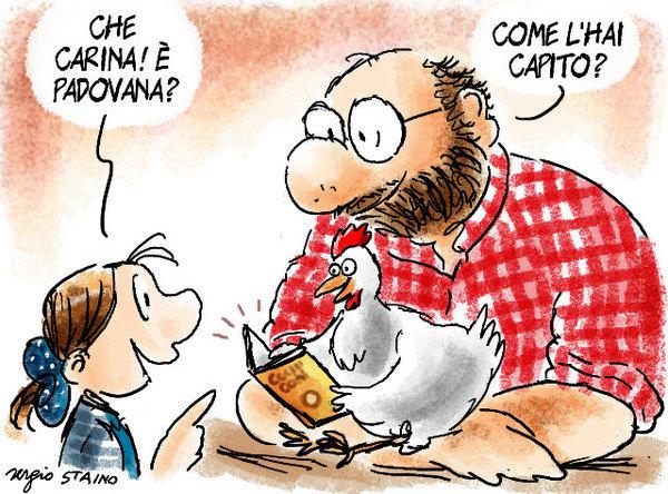 Vignetta Staino