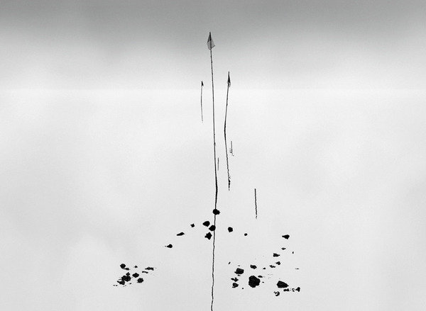 Franco donaggio sabrina raffaghello arte contemporanea for Veneta arredi alessandria